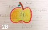 2B und Apfel